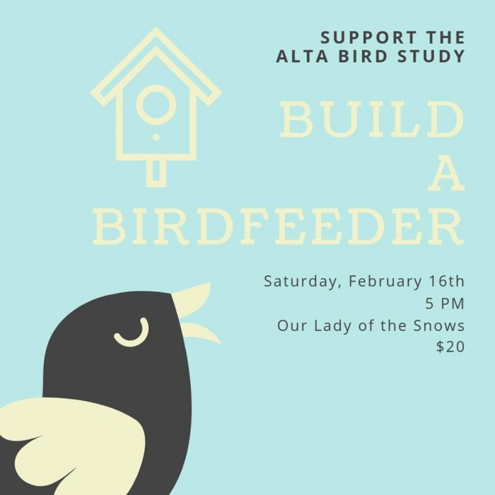 Build a Bird Feeder to Support the Alta Bird Study