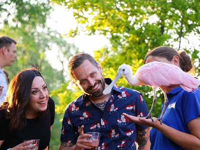 How to Garden Party the Right Way