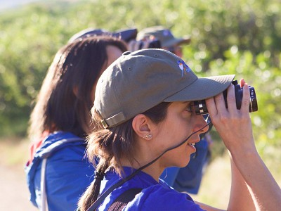 Birding Connections: Online learning, volunteer bonding & birding in SLC